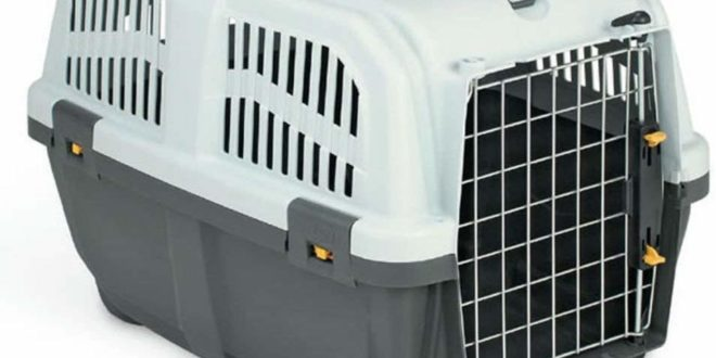 Katzentransport-Box aus Plastik