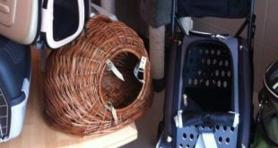 transportbox hund katze nager. Black Bedroom Furniture Sets. Home Design Ideas