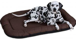 Knuffelwuff Hundebett Test