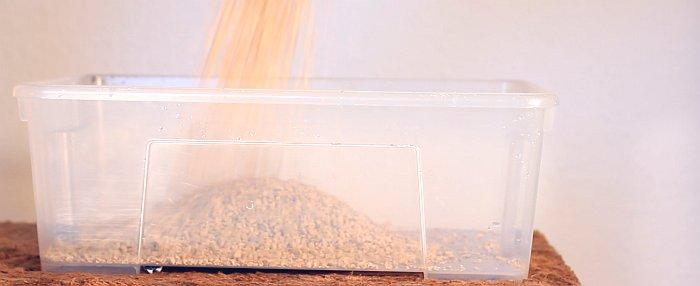 Katzenstreu wird ins Klo eingefüllt