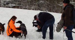 hundkatzemaus Team filmt gudrun Sauter und Galgos im Schnee