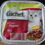 Cachet Review