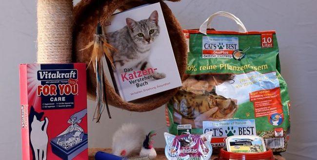 Katzenzubehör Übersicht