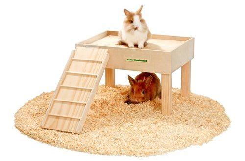 Ruheplatz mit Kaninchen