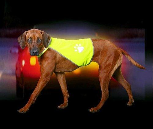 hundeweste warnweste safety dog im test. Black Bedroom Furniture Sets. Home Design Ideas