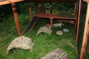 Meerschweinchen Gehege für den Garten