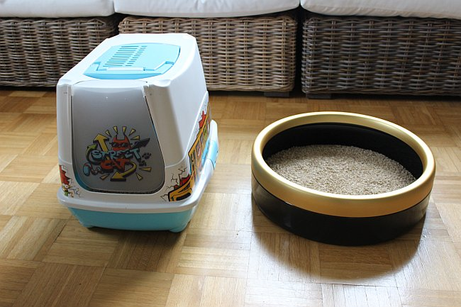 Katzenklo Vergleich Haubenklo vs rundes Klo